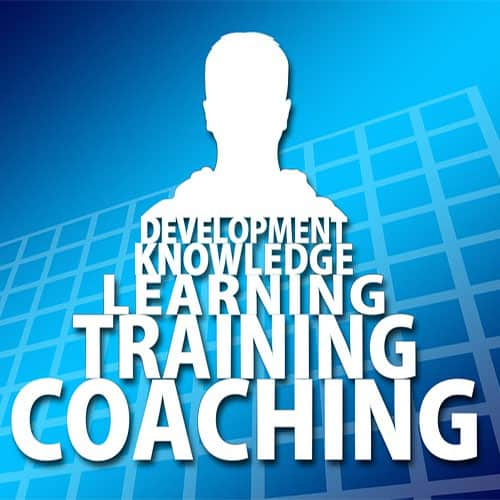 Business advisory and coaching services